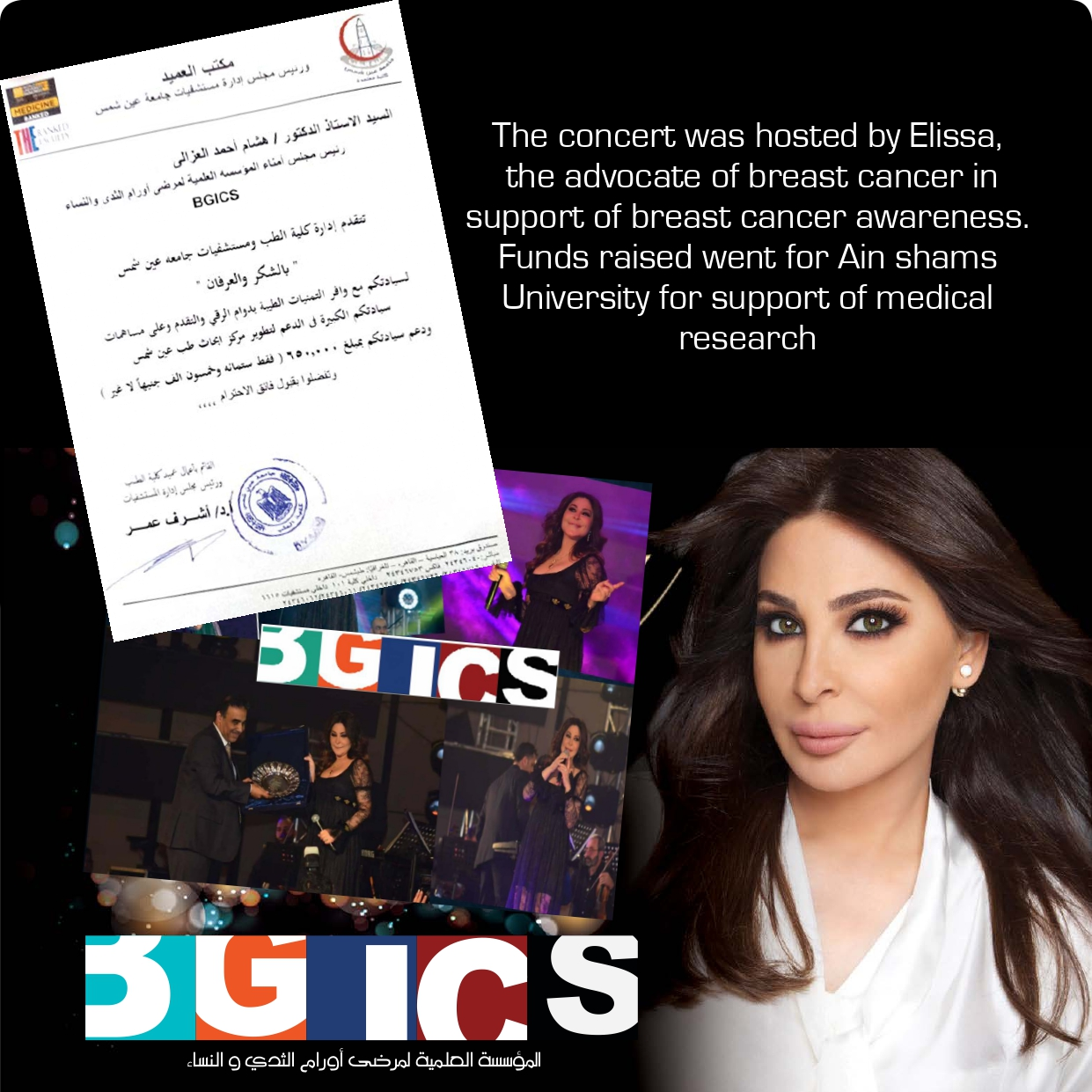 Elissa by hosted was concert T